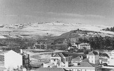 O Monsanto desde a Palhavã, Lisboa (F.Cunha, 1945)
