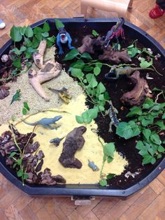 Dinosaur Tuff spot! Nanny Activities, Nursery Activities, Dinosaur Activities, Cement Mixing Tray, Secret Garden Theme, Australia Crafts, Dinosaur Garden, Daycare Themes, People Who Help Us