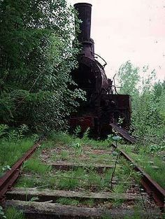 Still fixed to the tracks it came to rest on this old locomotive biodegrades peacefully.   #giftkone.com