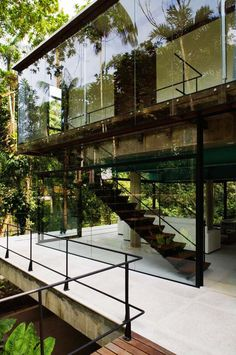 Small Glass House in the Middle of Nature, Sao Paulo