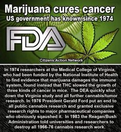 The US Gov't has patented Cannabinoids from marijuana since 1974 - if they know it has medicinal benefit, why is it still a Schedule I drug?!