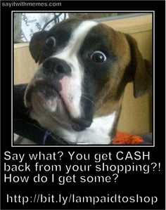 Get Paid To Shop. Get Cash Back From Your Shopping. « Say It With Memes