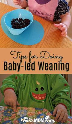 Tips for doing baby-led weaning, from choosing the right bib to the right foods to start baby on. Baby-led weaning is a fun and easy way to introduce your infant to solid foods. Baby Tips, Baby Hacks, Starting Solids Baby, Introducing Solids, Baby Led Weaning, Baby Birth, Making Memories, Family Activities, Meals For One