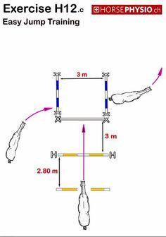 easy jump training www.horsephysio.ch