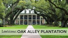 How to spend a perfect day touring the historic Oak Alley Sugarcane Plantation and other ones along the Mississippi in southern Louisiana. Louisiana Usa, Central Europe, Caribbean Cruise, Day Tours, Touring, Family Travel, Travel Photos, Travel Inspiration, Explore