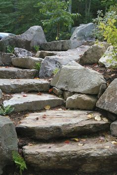 Stone steps in naturalized landscape