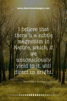 Nature sayings - I believe that there is a subtle magnetism in Nature which if we unconsciously yield to it will direct us aright. - Henry David Thoreau hotel restaurant travel tips tour Tips Travel Journey Quotes, Time Quotes, Wisdom Quotes, Qoutes, Short Inspirational Quotes, Inspiring Quotes About Life, Forest Quotes, Wisdom Scripture, Thoreau Quotes