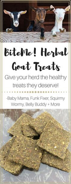 Treat your herd right with BiteMe! Herbal Goat Treats!