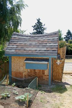 cool coop! like the sagging roof, the uneven door with cutout and the back window that is off kilter.