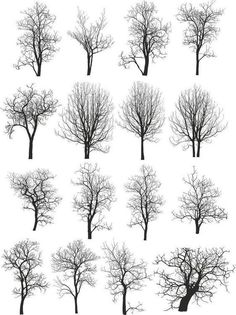 Find Dead Tree Without Leaves Vector Illustration stock images in HD and millions of other royalty-free stock photos, illustrations and vectors in the Shutterstock collection. Landscape Architecture Drawing, Landscape Drawings, Cool Landscapes, Landscape Fabric, Tree Sketches, Drawing Sketches, Art Drawings, Drawing Ideas, Pencil Sketches Of Nature