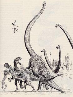 Dinosaur Life, Dinosaur Photo, Dinosaur Images, Dinosaur Art, Prehistoric Wildlife, Prehistoric Creatures, Jurassic World Dinosaurs, Jurassic Park World, Animal Sketches