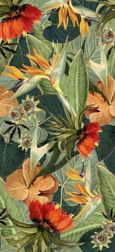ideas for flowers wallpaper backgrounds tropical prints Print Wallpaper, Pattern Wallpaper, Wallpaper Backgrounds, Nature Wallpaper, Vintage Backgrounds, Tropical Wallpaper, Trendy Wallpaper, Iphone Wallpaper Art, Green Floral Wallpaper