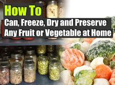 How to Can, Freeze, Dry and Preserve Any Fruit or Vegetable at Home - Emergency Preparedness, Survival Prepping, Homesteading Survival Food, Survival Prepping, Emergency Preparedness, Survival Skills, Charcuterie, Steamed Green Beans, Canned Food Storage, Freeze Drying Food, Home Canning