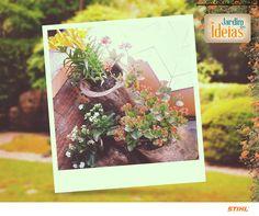 Nossa fã Clarice Pinheiro nos presenteou com essa bela foto do seu jardim. Ela cultivou várias espécies de flores em troncos de árvore.