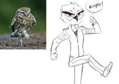 floatingmegane-san: Doodles - Vanoss the owl boi i googled some owl pics… and well… this happened. my hand slipped.
