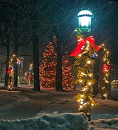 Petoskey Christmas : Petoskey, Michigan : Mike Barton Photography