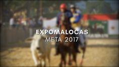 Cómo se Vivió Expomalocas 2017 - Meta - TvAgro por Juan Gonzalo Angel