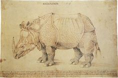 Albrecht Durer: Rhinoceros 1515 A stunning etch that certainly pays close attention to every single detail on the animal's body.