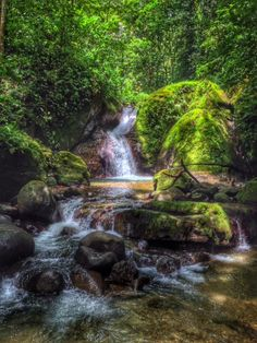 The most #enchanted and #magical #waterfall in Ojochal #costarica  Check out the blog post about our experience: http://www.puravidadreams.com/blog/the-most-enchanted-and-magical-waterfall-in-ojochal-costa-rica  #lifeincostarica #livingincostarica