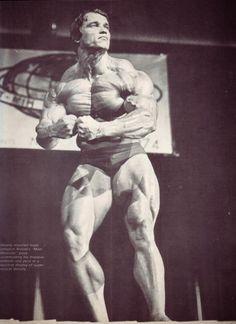 arnold schwarzenegger most muscular