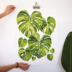 Monstera deliciosa climbing to the light. All finished and my favorite piece yet!