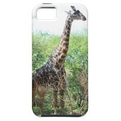 >>>Hello          Giraffe iPhone 5/5S Case           Giraffe iPhone 5/5S Case We provide you all shopping site and all informations in our go to store link. You will see low prices onDiscount Deals          Giraffe iPhone 5/5S Case Here a great deal...Cleck Hot Deals >>> http://www.zazzle.com/giraffe_iphone_5_5s_case-179529085442079337?rf=238627982471231924&zbar=1&tc=terrest