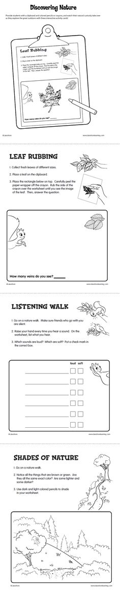Lakeshore's printable is the perfect complement to a nature walk! Provide students with a clipboard and colored pencils or crayons, and watch their natural curiosity take over as they explore the great outdoors with these interactive activity cards!