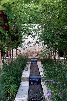 Another look at the garden as it builds up to the rear façade of the ...