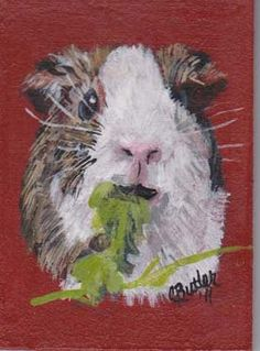 Guinea Pig ACEO by hrt2handcreations on Etsy, $25.00