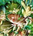Archetypal structure in mushroom or psilocybin art and fairy art