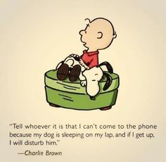 Dog quote | Charlie Brown