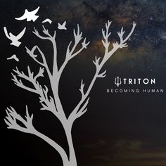 "Triton, ""You"" 