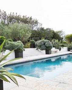 The pool in the backyard of this Malibu home = an instant cure for the case of the Mondays. Click the link in our bio to see more from this serene and beautiful home. | Photo by @TessaNeustadt, design by @alexanderdesignbuild.