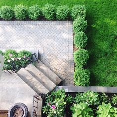 Herringbone patio with boxwood trim