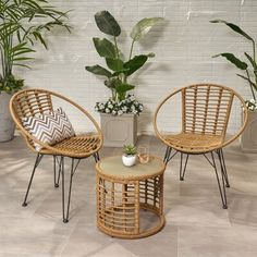 Bungalow Rose Coffelt Outdoor Modern Boho 3 Piece Rattan Seating Group with Cushions Frame Finish: Light Brown Club Chairs, All Modern, Modern Boho, Wood And Metal, Wicker, Diy Home Decor, Bedroom Decor, Hairpin Legs, Flourish