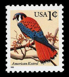 American Kestrel stamp issued in 1991 as part of the Flora & Fauna stamp series, depicting the animal and plant life characteristic of the U.S.