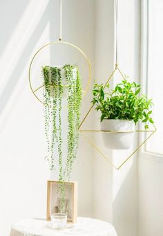 20 stylish ideas for decorating your small space with plants - Living in a shoebox