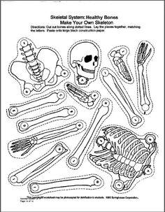 skeletal system quiz worksheets life science and school life. Black Bedroom Furniture Sets. Home Design Ideas