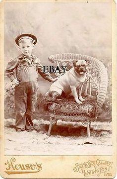 Antique 1895 Cabinet Card Photo Cute Boy Pug Dog Vintage Photograph Date & ID Pug Mops, Photos With Dog, Pug Art, Vintage Dog, Cute Pugs, Flappers, Greyhounds, Pug Life, Four Legged