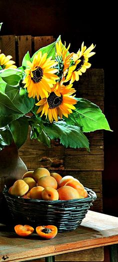 pleasures...sunflowers & apricots