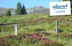 Mountains, Nature, Tourism, Tours, Places, History, Viajes, Naturaleza, Bergen