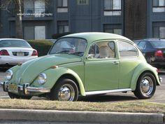 Volkswagen Beetles, Car Volkswagen, Vw Cars, My Dream Car, Dream Cars, Vw Super Beetle, Classic Sports Cars, Offroad, Bugs