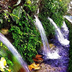 El brullir de l'aigua a Les Deus de #SantQuinti de #Mediona #Penedes