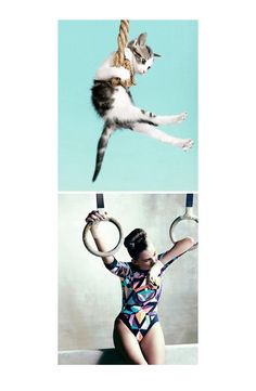 Friday 27th July: https://www.facebook.com/pages/Studio-Jane/412136338814172 #cats #meow #fashion #olympics