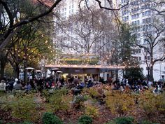 SHAKE SHACK - NYC / its the joint!