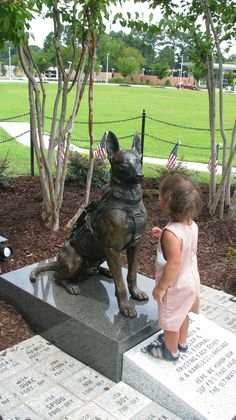 The very first ever #K9 Memorial for SOF dogs was unveiled on July 27,2013 at the #Airborne and Special Operations Museum in Fayetteville, NC. This life size #bronze #statue was created by #sculptor #Lena #Toritch and depicts a #Belgian #Malinois wearing full deployment kit. This little girl was studying carefully the dog's face and was asking if it was OK to touch the doggy...