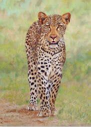 cuadros de animales leopardos