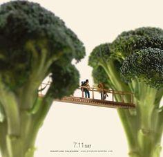 Bouw een brug maar dan tussen broccoli bomen