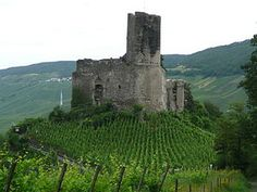 Burg Landshut - In the beautiful city of Bernkastel on the Mosel, it overlooks vineyards, the river and the medieval town of Bernkastel. Seeing it at night took my breath away...