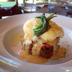 Pork & Potato hash w/ Poached Eggs & Harissa Hollandaise from @miradororesto in B.C. via @Erin_Ireland